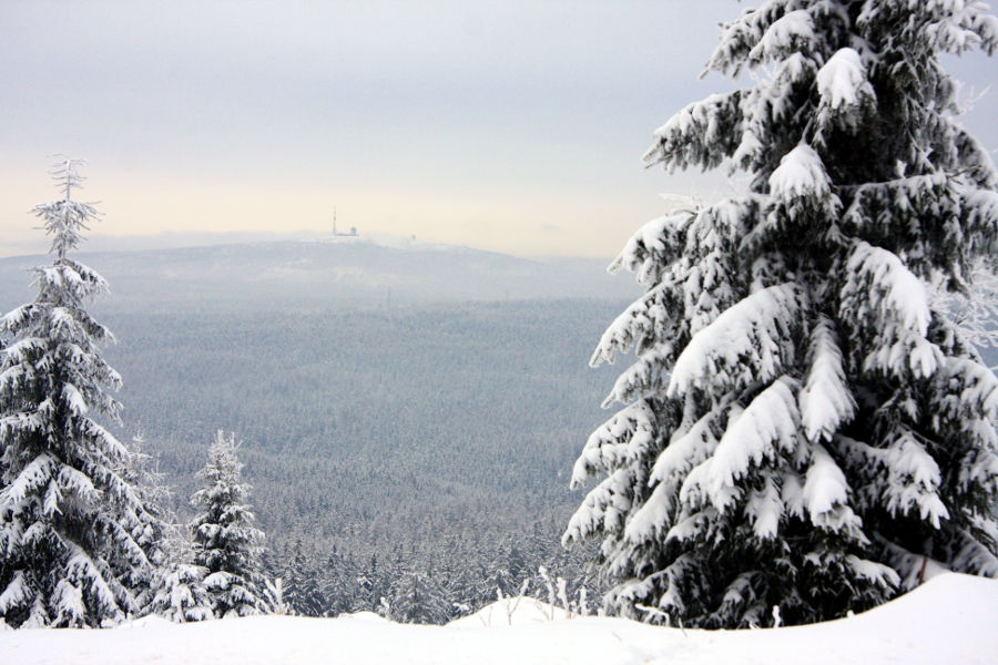 Winter im Harz Januar 2013 - Brockenblick